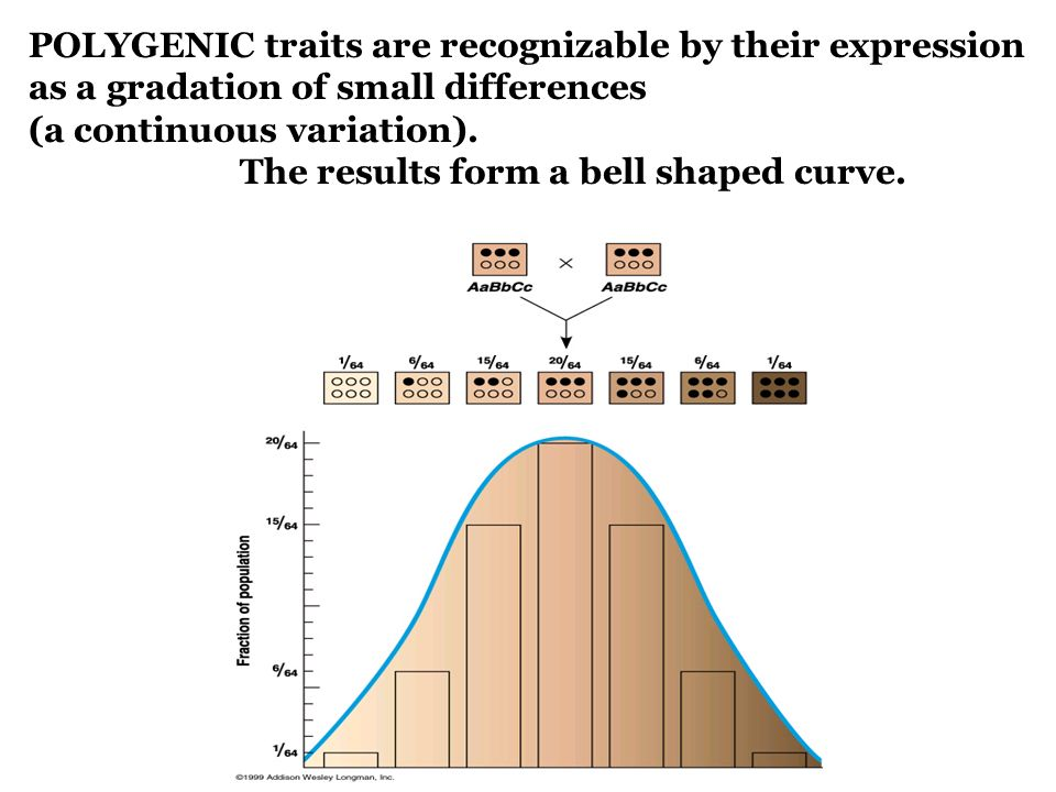 POLYGENIC traits are recognizable by their expression as a gradation of small differences (a continuous variation). The results form a bell shaped cur