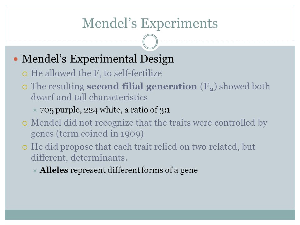 Mendels Experiments Mendels Experimental Design He allowed the F 1 to self-fertilize The resulting second filial generation (F 2 ) showed both dwarf a