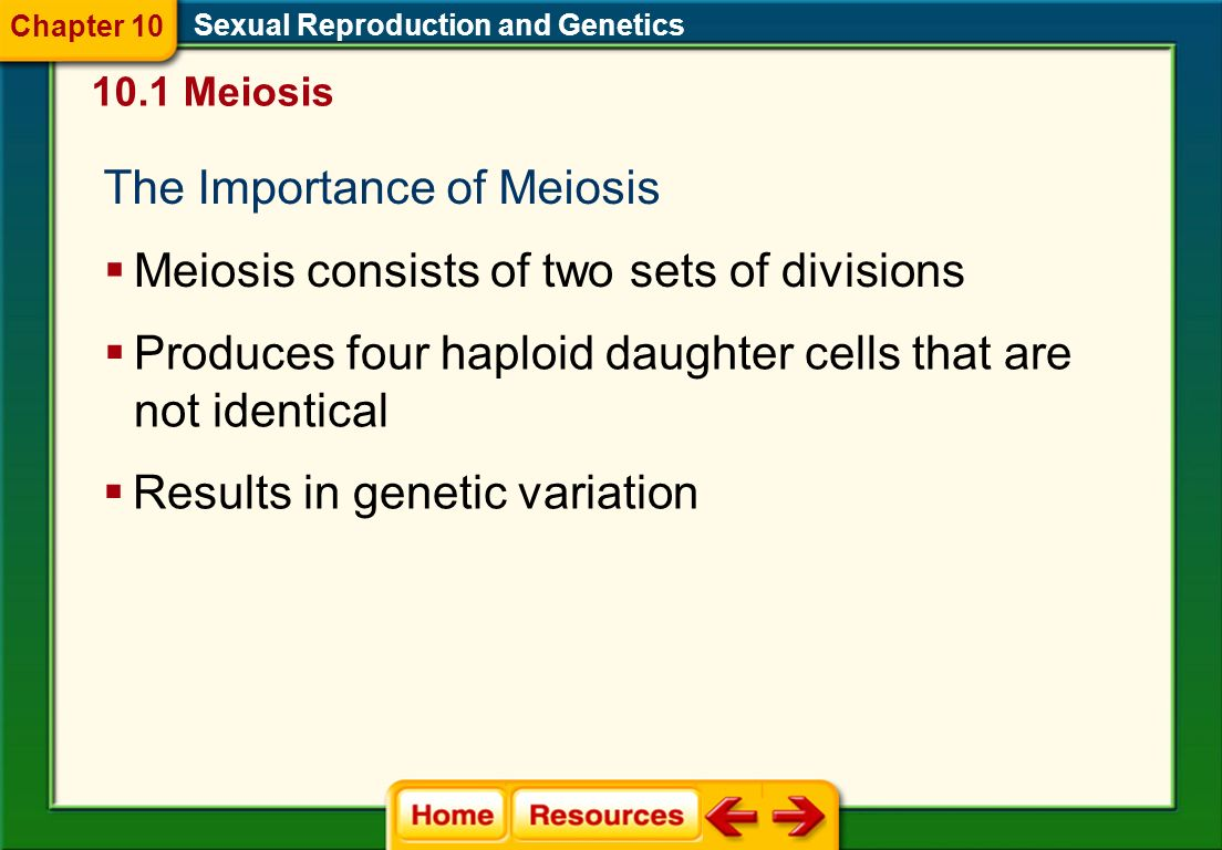 Sexual Reproduction and Genetics 10.1 Meiosis Chapter 10 How to tell which process (mitosis, meiosis I, or meiosis II)? 1)Look at how the chromosomes