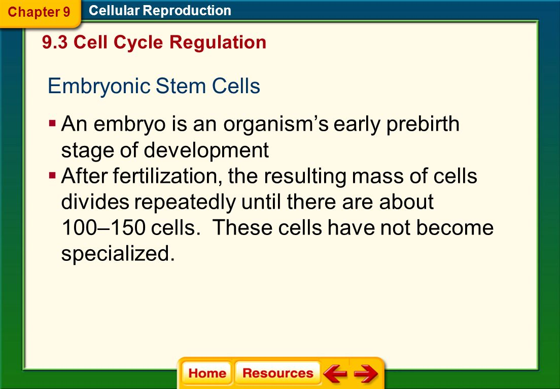 Cellular Reproduction Stem Cells Unspecialized cells that can develop into specialized cells when under the right conditions Chapter 9 9.3 Cell Cycle