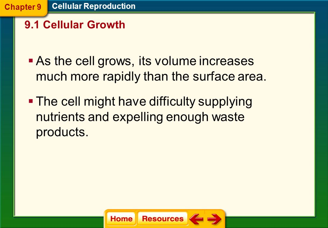 9.1 Cellular Growth Chapter 9 Cellular Reproduction As cell size INCREASES, its volume INCREASES much faster than its surface area Two Formulas SA = 2