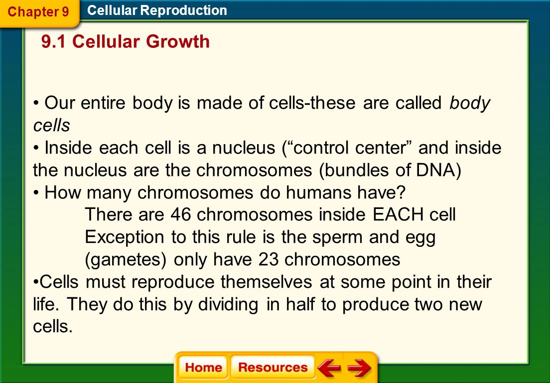 Cellular Communications The need for signaling proteins to move throughout the cell also limits cell size. Cell size affects the ability of the cell t