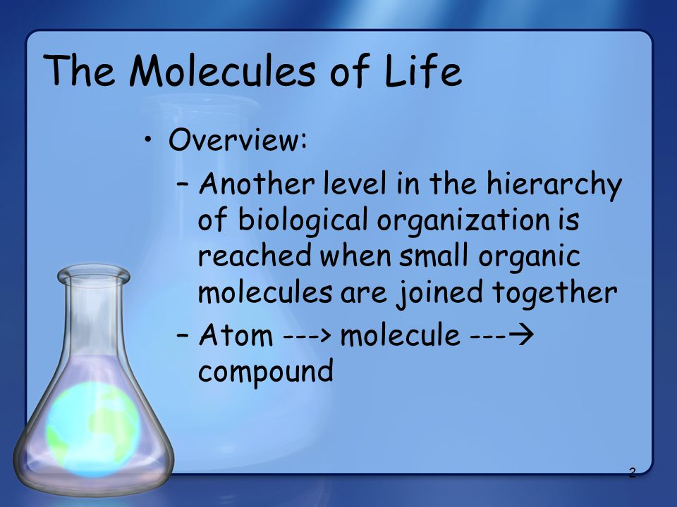 2 The Molecules of Life Overview: –Another level in the hierarchy of biological organization is reached when small organic molecules are joined togeth