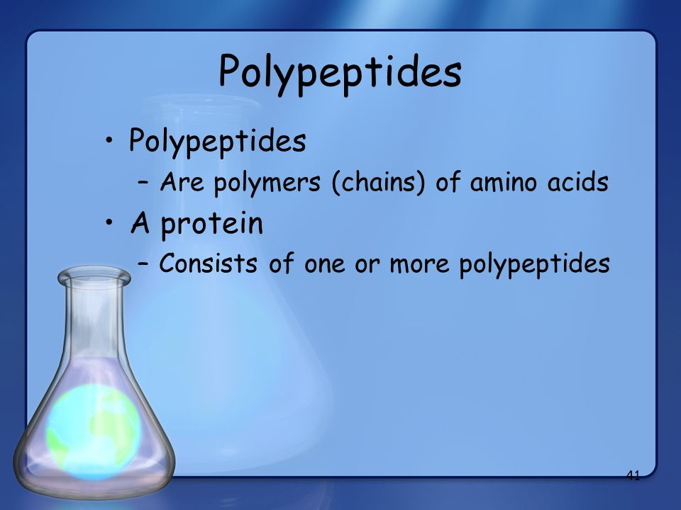 41 Polypeptides –Are polymers (chains) of amino acids A protein –Consists of one or more polypeptides