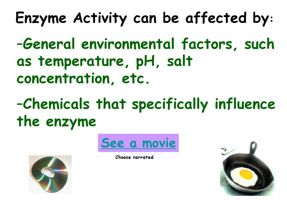 –General environmental factors, such as temperature, pH, salt concentration, etc. –Chemicals that specifically influence the enzyme See a movie Choose