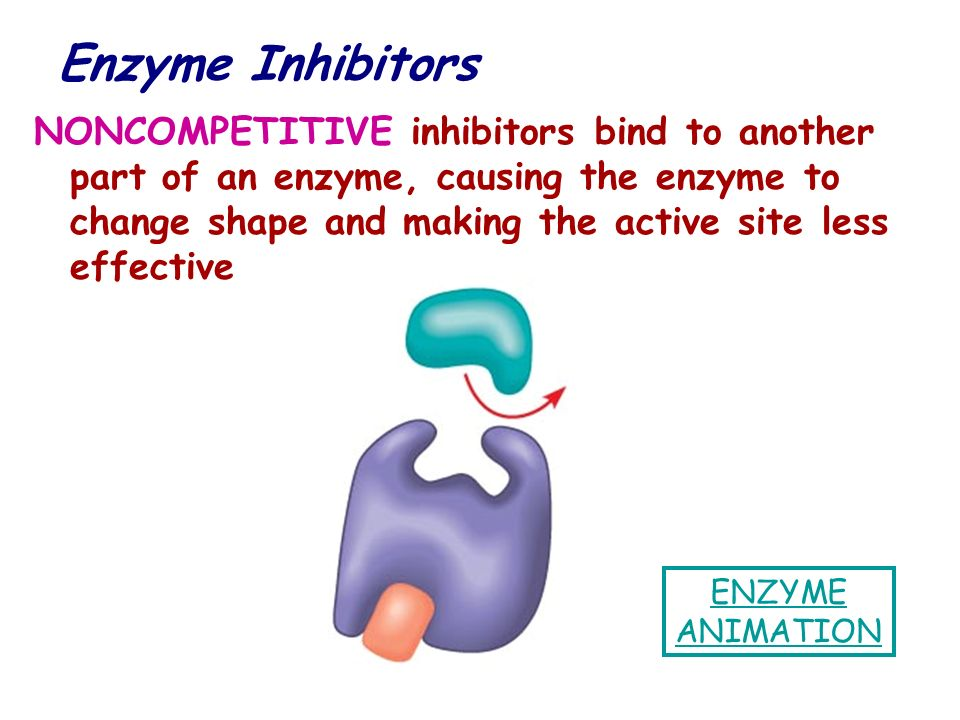 NONCOMPETITIVE inhibitors bind to another part of an enzyme, causing the enzyme to change shape and making the active site less effective ENZYME ANIMA