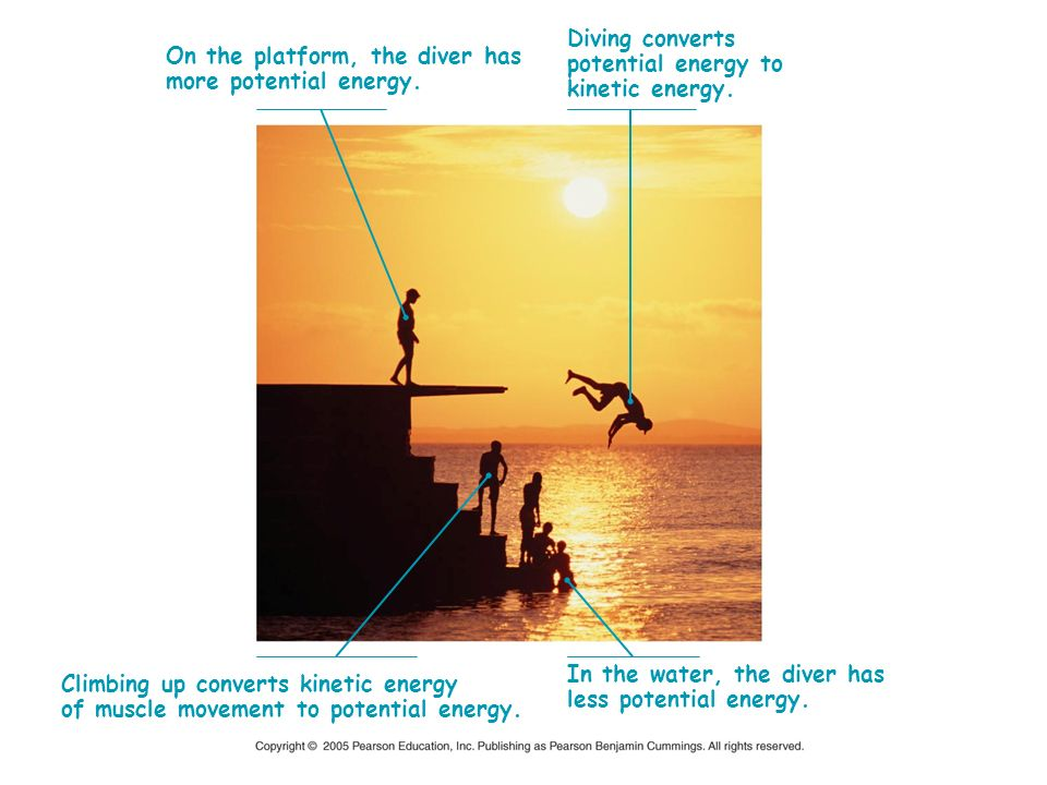 On the platform, the diver has more potential energy. Diving converts potential energy to kinetic energy. Climbing up converts kinetic energy of muscl
