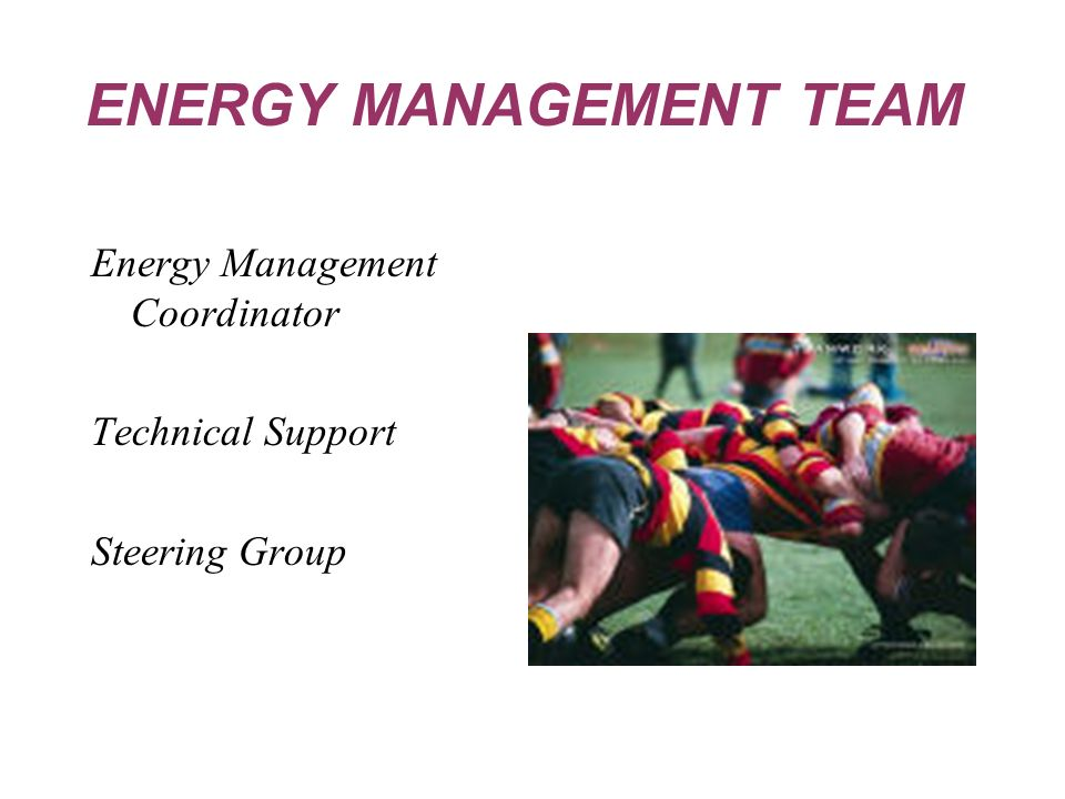 Energy Management Coordinator Technical Support Steering Group ENERGY MANAGEMENT TEAM