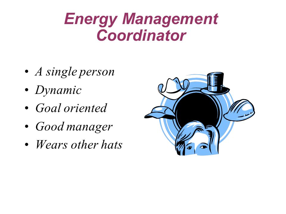A single person Dynamic Goal oriented Good manager Wears other hats Energy Management Coordinator