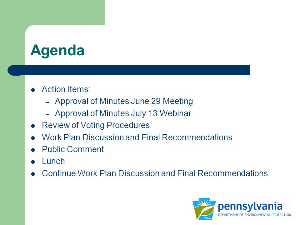 Agenda Action Items: – Approval of Minutes June 29 Meeting – Approval of Minutes July 13 Webinar Review of Voting Procedures Work Plan Discussion and Final Recommendations Public Comment Lunch Continue Work Plan Discussion and Final Recommendations