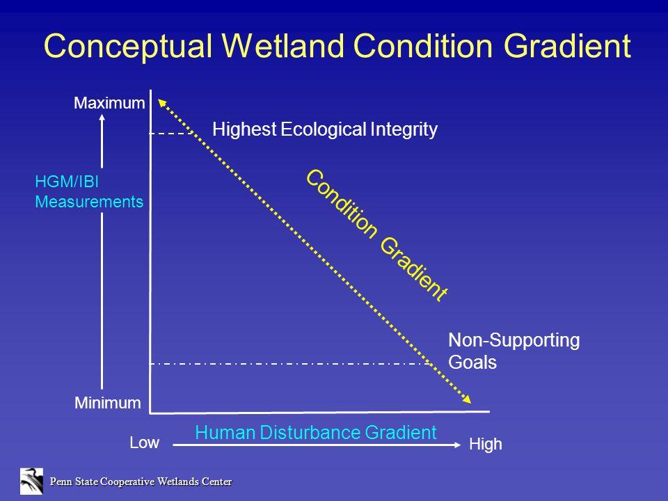 Penn State Cooperative Wetlands Center