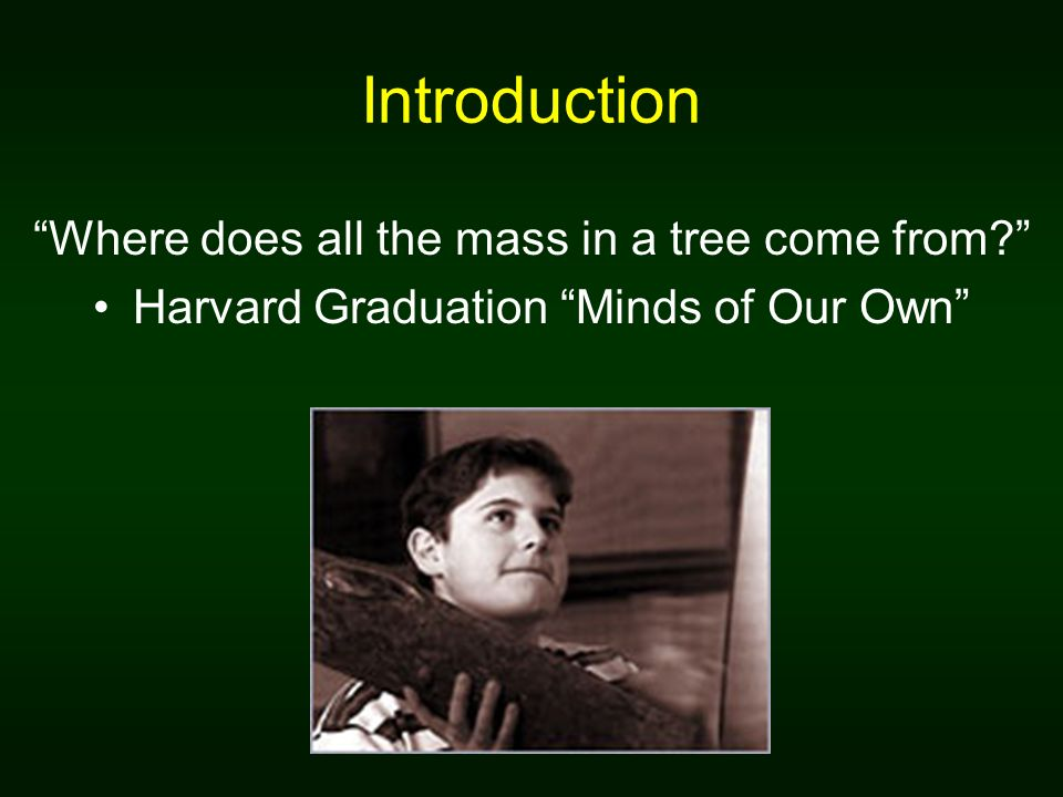 Introduction Where does all the mass in a tree come from? Harvard Graduation Minds of Our Own