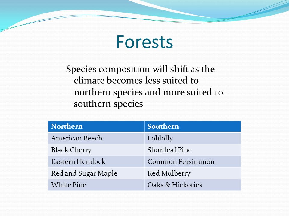 Forests Species composition will shift as the climate becomes less suited to northern species and more suited to southern species NorthernSouthern American BeechLoblolly Black CherryShortleaf Pine Eastern HemlockCommon Persimmon Red and Sugar MapleRed Mulberry White PineOaks & Hickories