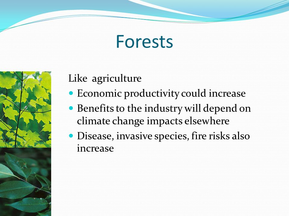Forests Like agriculture Economic productivity could increase Benefits to the industry will depend on climate change impacts elsewhere Disease, invasive species, fire risks also increase
