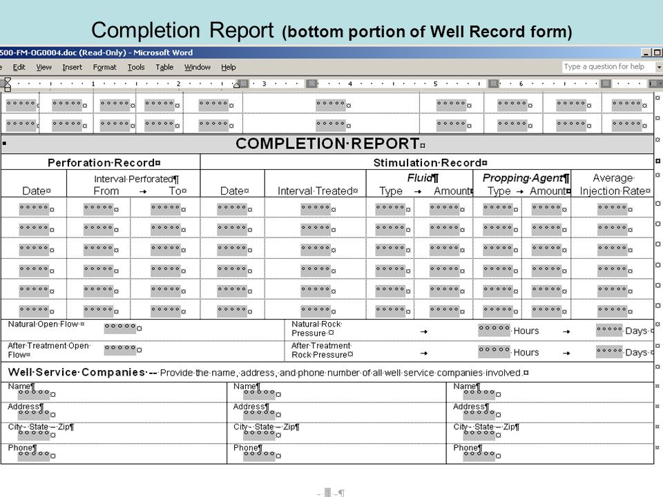 Completion Report (bottom portion of Well Record form)