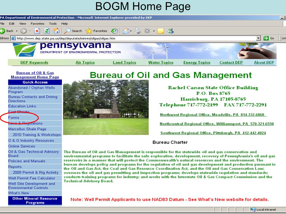 BOGM Home Page
