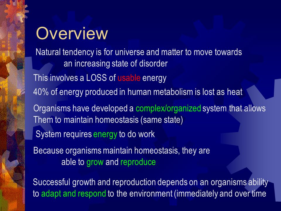 Overview Natural tendency is for universe and matter to move towards an increasing state of disorder This involves a LOSS of usable energy 40% of ener
