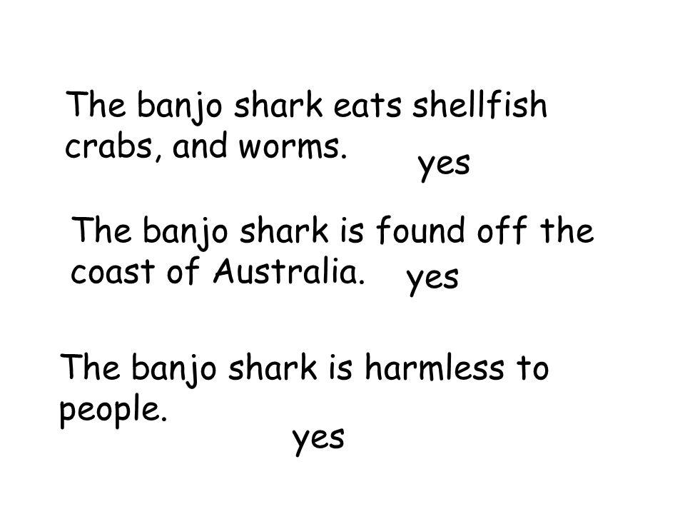 The banjo shark eats shellfish crabs, and worms.