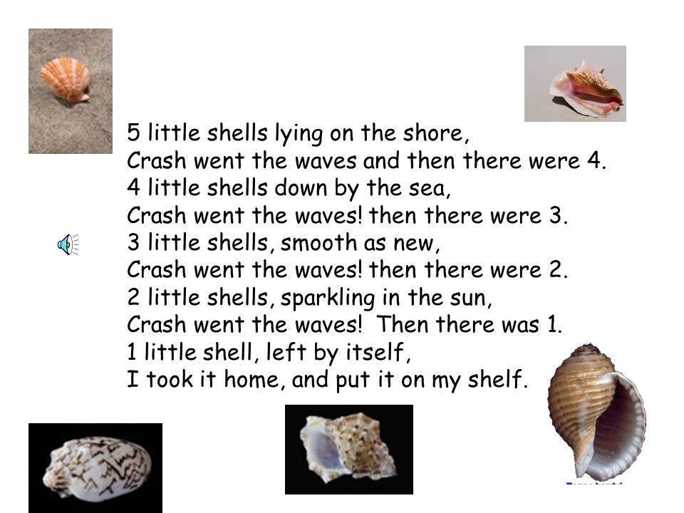 5 little shells lying on the shore, Crash went the waves and then there were 4.
