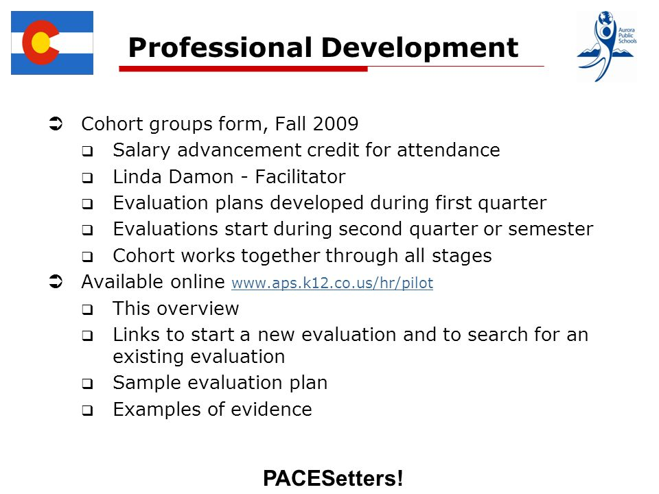 PACESetters! Professional Development Cohort groups form, Fall 2009 Salary advancement credit for attendance Linda Damon - Facilitator Evaluation plan