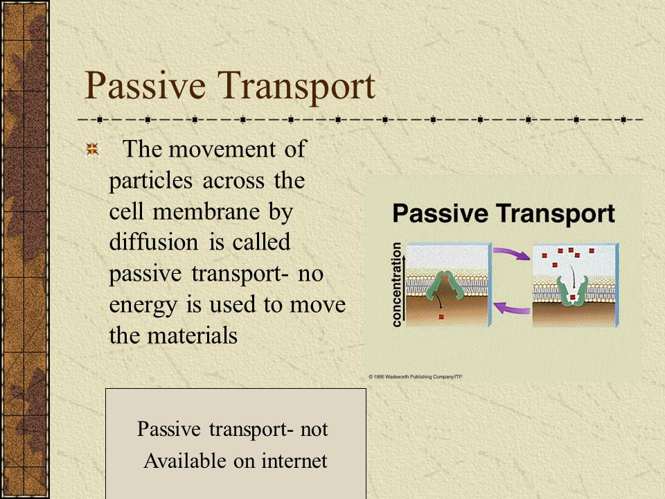 Passive Transport The movement of particles across the cell membrane by diffusion is called passive transport- no energy is used to move the materials