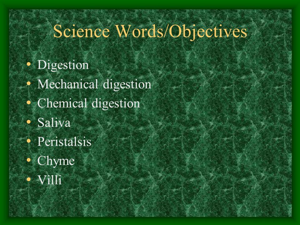 Science Words/Objectives Digestion Mechanical digestion Chemical digestion Saliva Peristalsis Chyme Villi