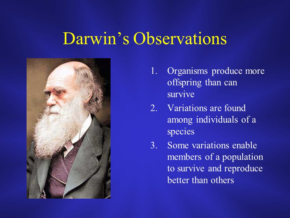 Darwins Observations 1.Organisms produce more offspring than can survive 2.Variations are found among individuals of a species 3.Some variations enable members of a population to survive and reproduce better than others