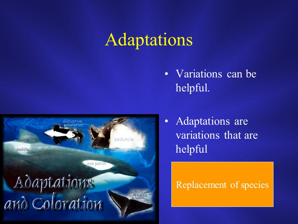Adaptations Variations can be helpful.