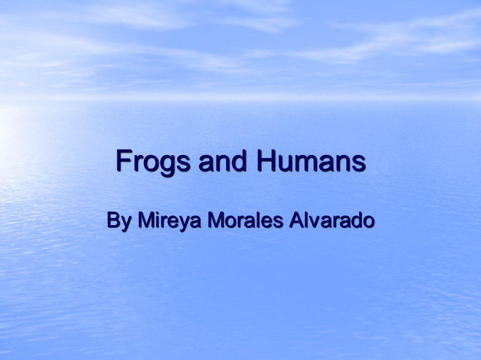 Frogs and Humans By Mireya Morales Alvarado