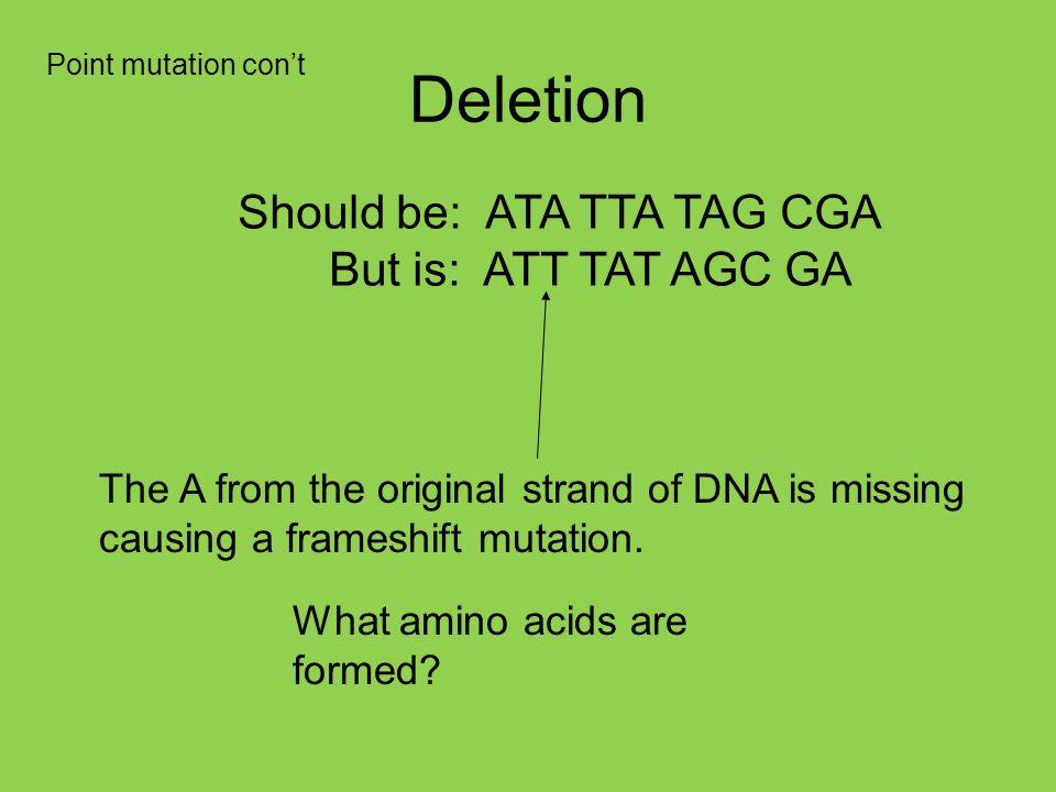 Deletion Should be: ATA TTA TAG CGA But is: ATT TAT AGC GA The A from the original strand of DNA is missing causing a frameshift mutation.