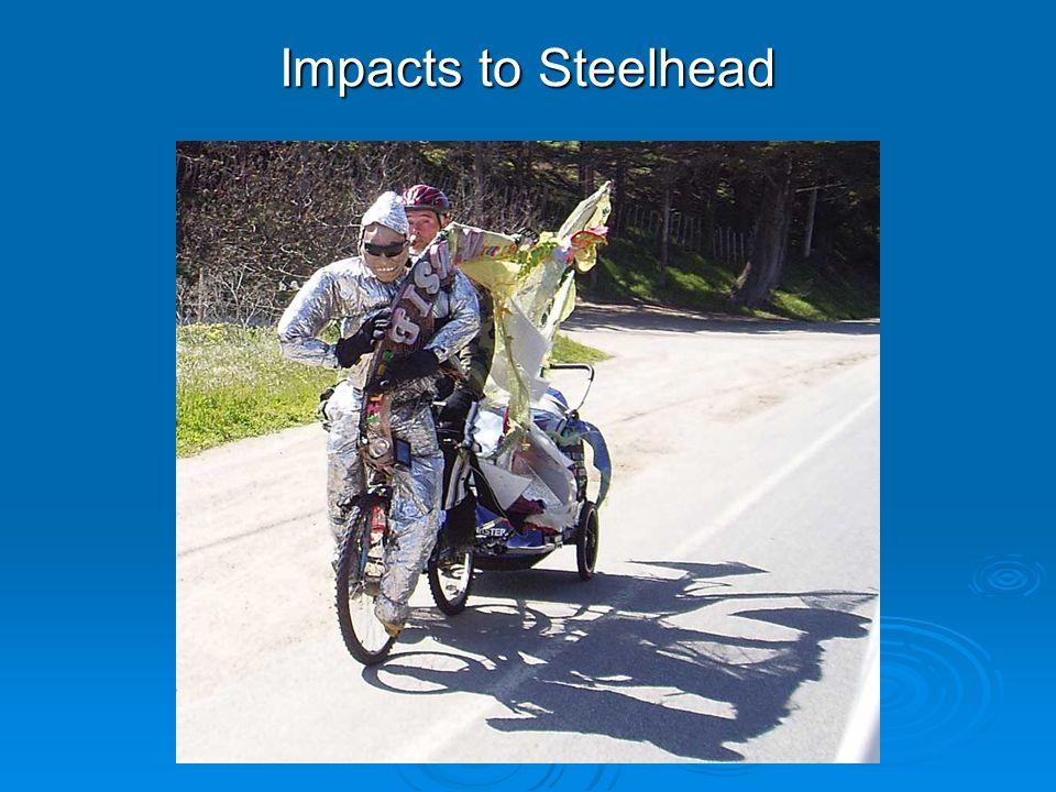 Impacts to Steelhead