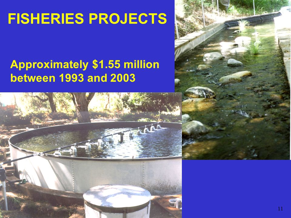 11 FISHERIES PROJECTS Approximately $1.55 million between 1993 and 2003
