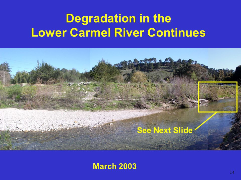 14 Degradation in the Lower Carmel River Continues March 2003 See Next Slide
