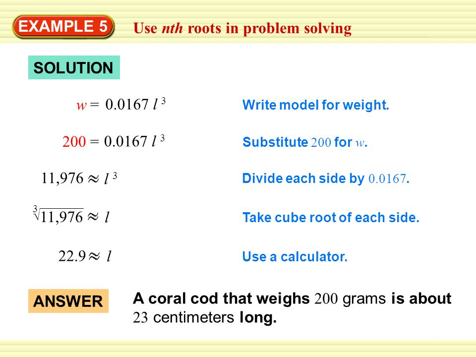 EXAMPLE 5 Use nth roots in problem solving SOLUTION Write model for weight. w 0.0167 l 3 = Substitute 200 for w. 200 0.0167 l 3 = Divide each side by