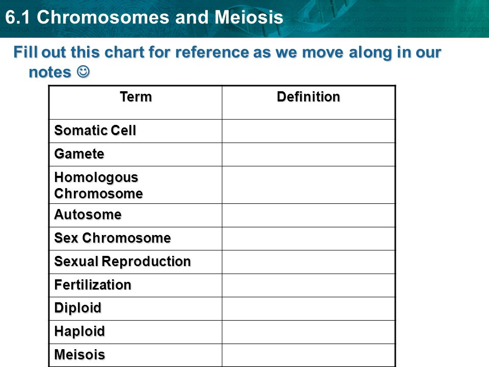 6.1 Chromosomes and Meiosis A.Body cells and gametes 1.