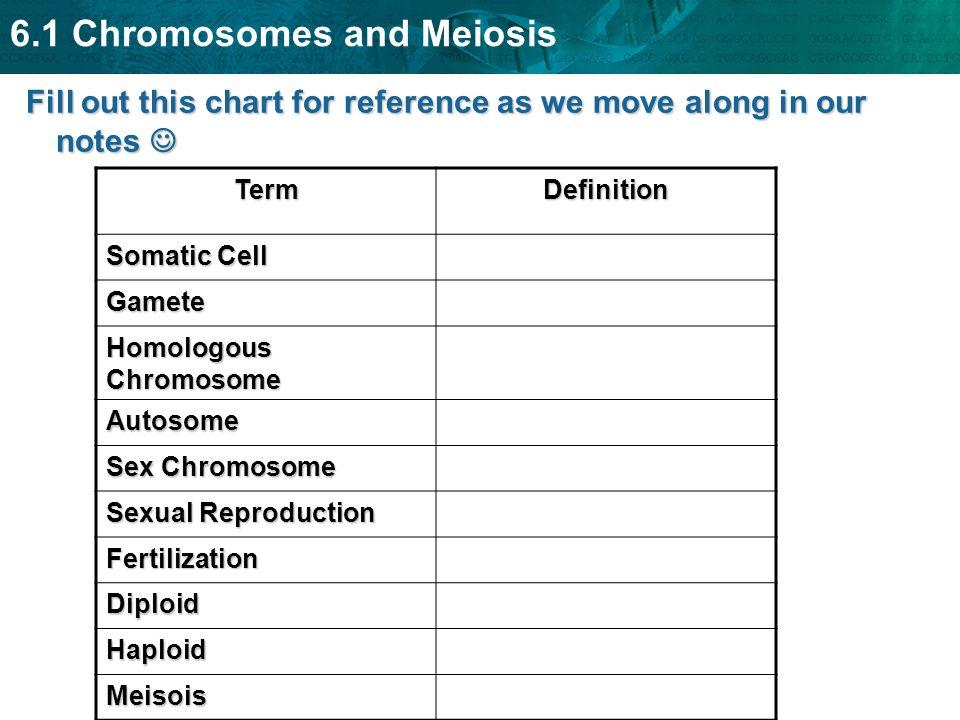 6.1 Chromosomes and Meiosis Meiosis makes haploid cells from diploid cells and:Meiosis makes haploid cells from diploid cells and: –occurs in sex cells –produces gametes