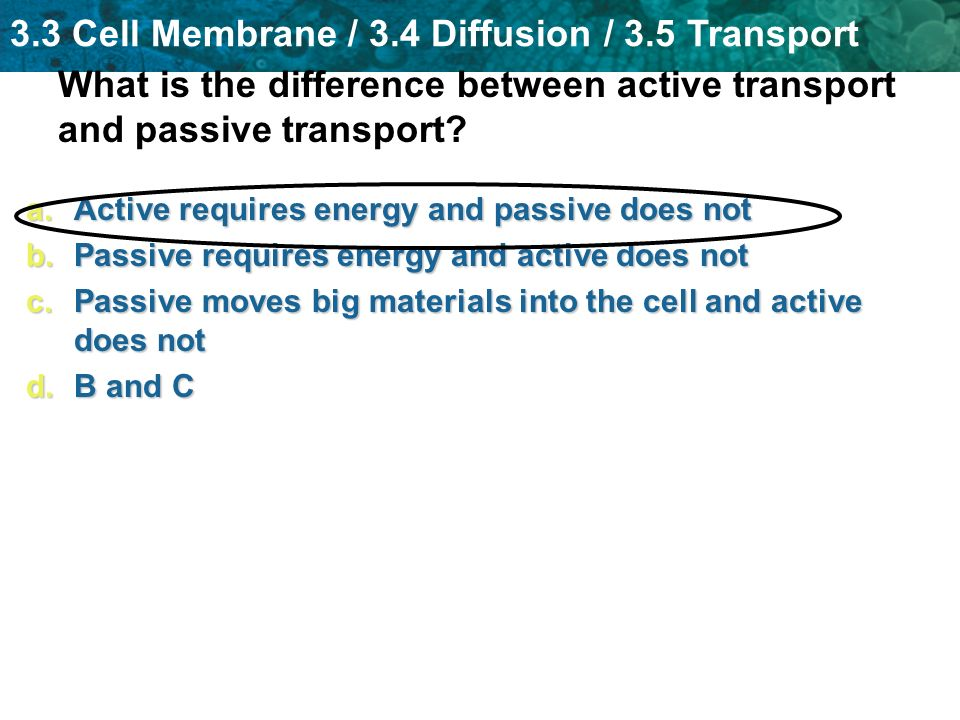 3.3 Cell Membrane / 3.4 Diffusion / 3.5 Transport What is the difference between active transport and passive transport? a.Active requires energy and