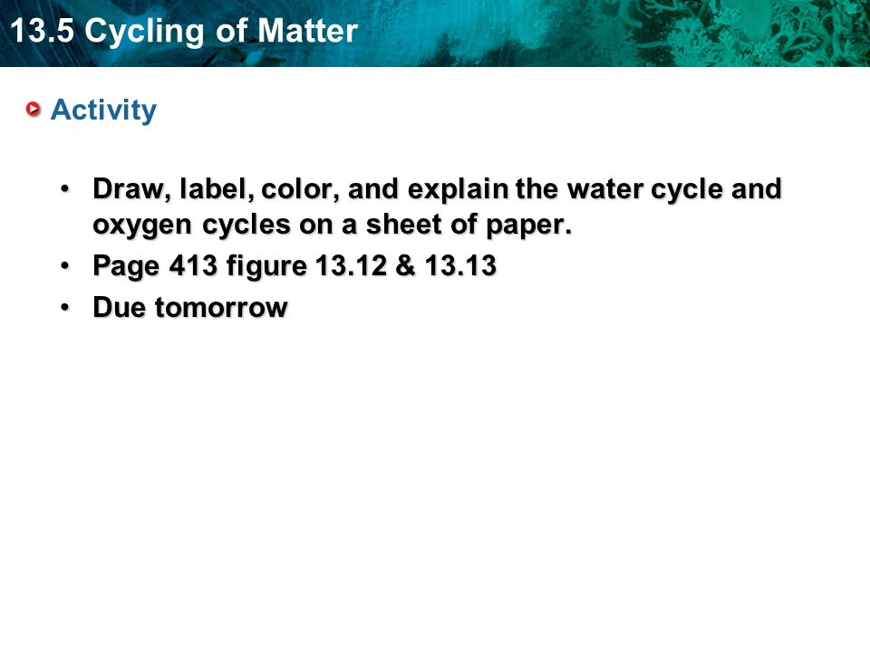 13.5 Cycling of Matter Activity Draw, label, color, and explain the water cycle and oxygen cycles on a sheet of paper.Draw, label, color, and explain