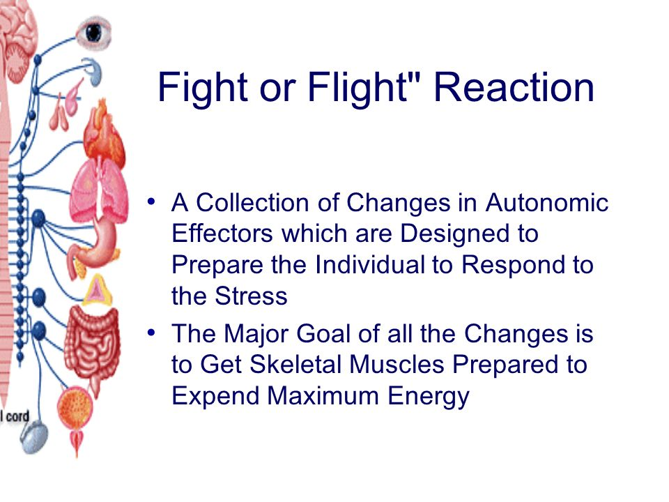 Fight or Flight Reaction A Collection of Changes in Autonomic Effectors which are Designed to Prepare the Individual to Respond to the Stress The Major Goal of all the Changes is to Get Skeletal Muscles Prepared to Expend Maximum Energy