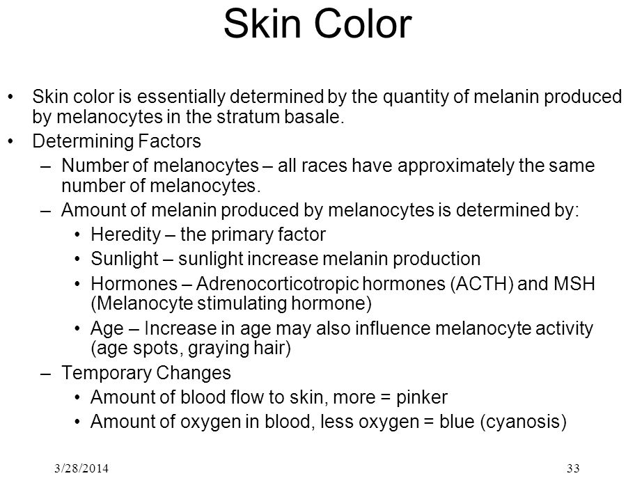 3/28/201433 Skin Color Skin color is essentially determined by the quantity of melanin produced by melanocytes in the stratum basale. Determining Fact