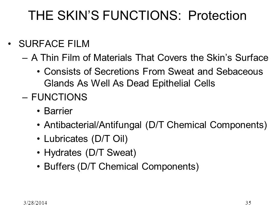 3/28/201435 THE SKINS FUNCTIONS: Protection SURFACE FILM –A Thin Film of Materials That Covers the Skins Surface Consists of Secretions From Sweat and