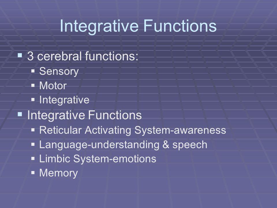 Integrative Functions 3 cerebral functions: Sensory Motor Integrative Integrative Functions Reticular Activating System-awareness Language-understandi