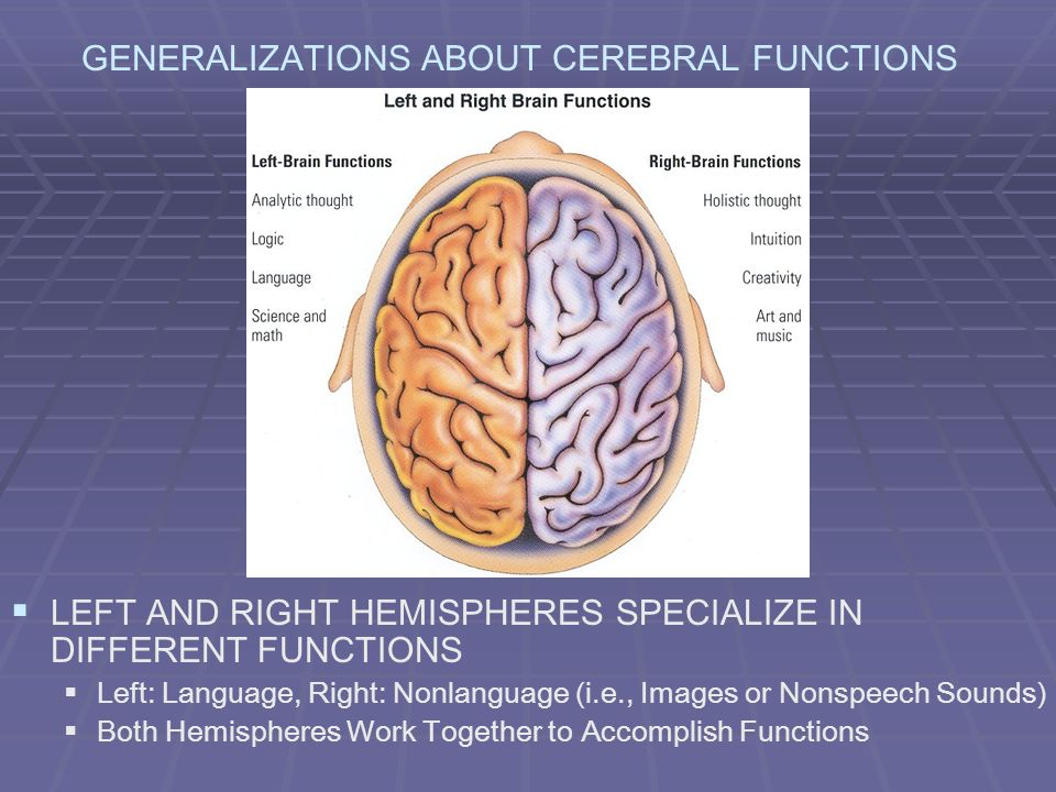 GENERALIZATIONS ABOUT CEREBRAL FUNCTIONS LEFT AND RIGHT HEMISPHERES SPECIALIZE IN DIFFERENT FUNCTIONS Left: Language, Right: Nonlanguage (i.e., Images