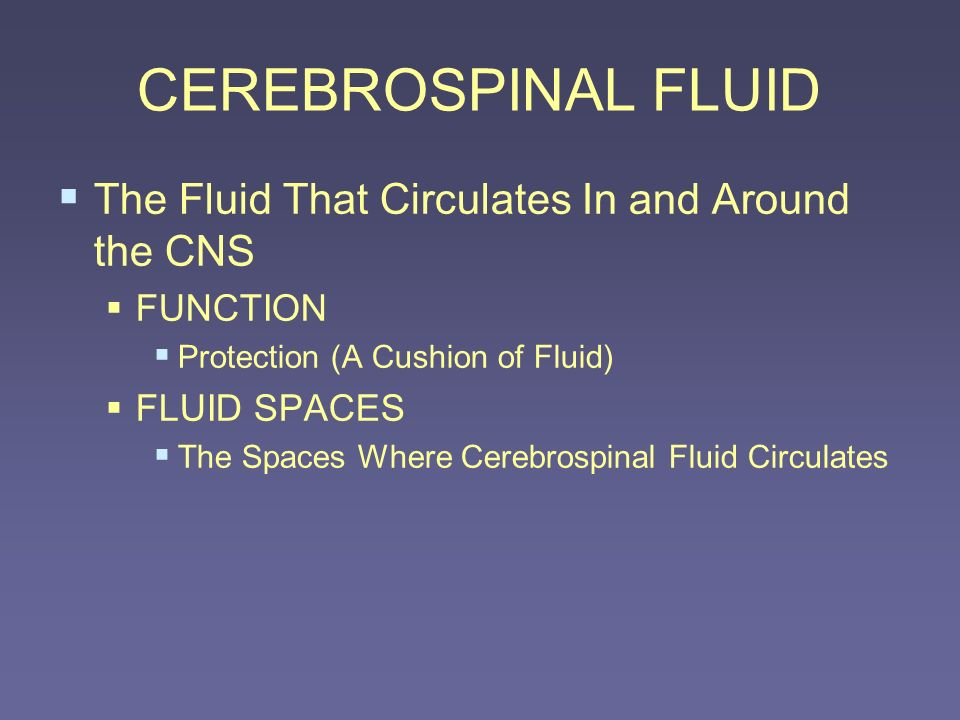 CEREBROSPINAL FLUID The Fluid That Circulates In and Around the CNS FUNCTION Protection (A Cushion of Fluid) FLUID SPACES The Spaces Where Cerebrospin