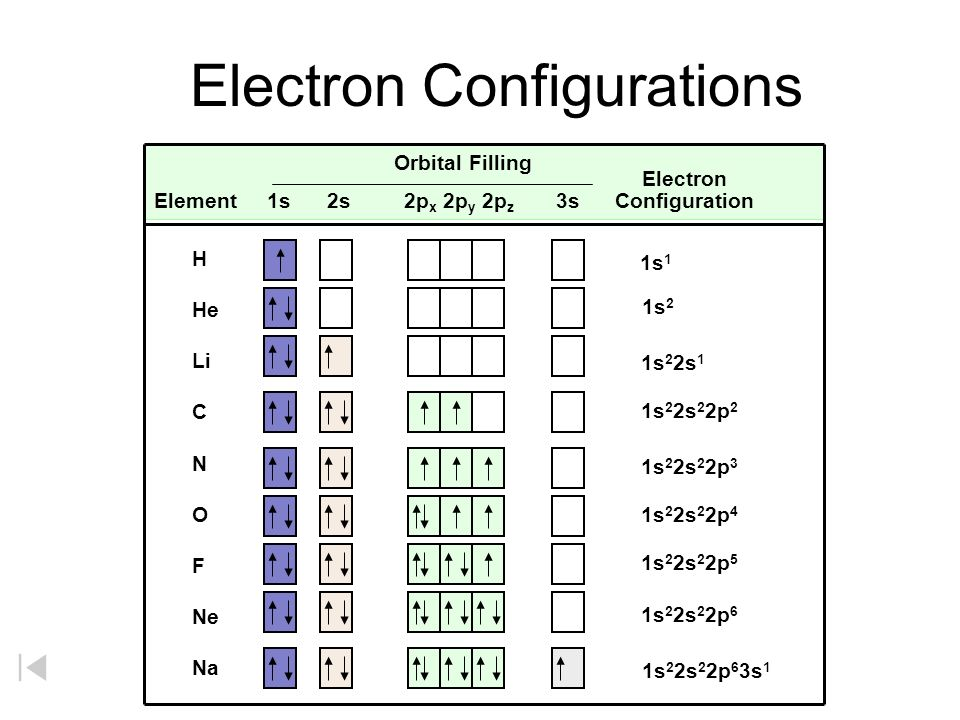 RIGHT WRONG General Rules Hunds RuleHunds Rule –Within a sublevel, place one electron per orbital before pairing them. –Empty Bus Seat Rule Courtesy C