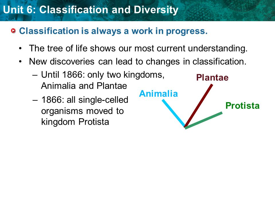 Unit 6: Classification and Diversity Classification is always a work in progress.