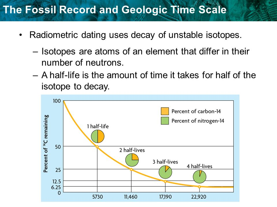 The Fossil Record and Geologic Time Scale –A half-life is the amount of time it takes for half of the isotope to decay. Radiometric dating uses decay