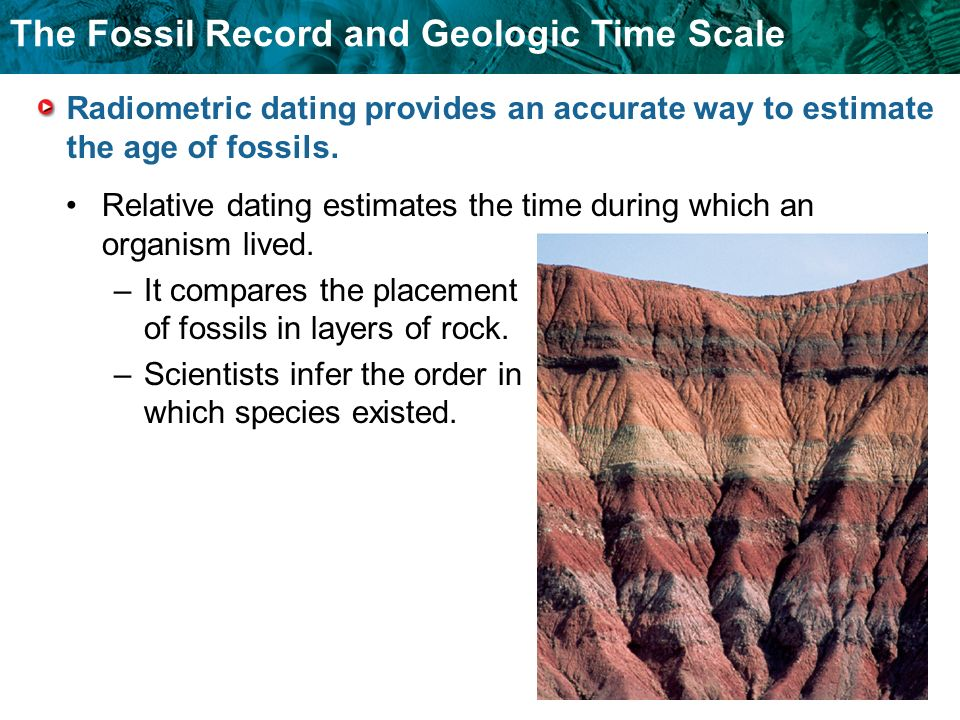 The Fossil Record and Geologic Time Scale Radiometric dating provides an accurate way to estimate the age of fossils. Relative dating estimates the ti