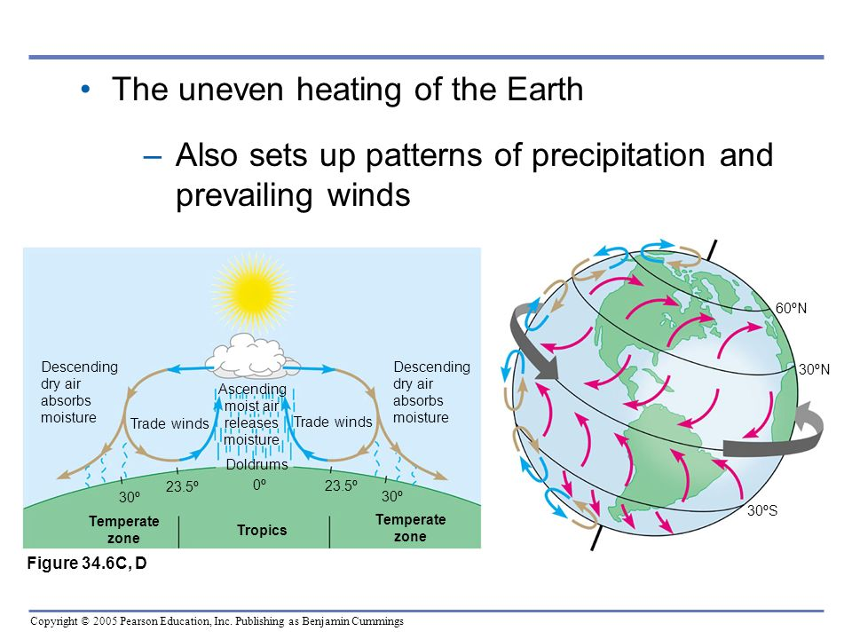 Copyright © 2005 Pearson Education, Inc. Publishing as Benjamin Cummings The uneven heating of the Earth –Also sets up patterns of precipitation and p
