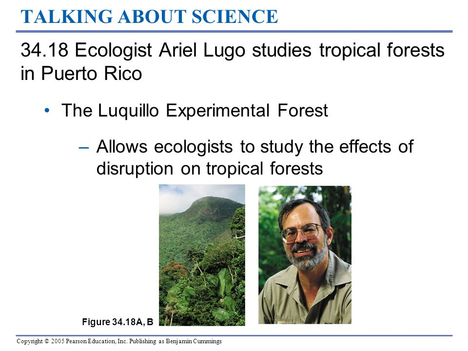 Copyright © 2005 Pearson Education, Inc. Publishing as Benjamin Cummings TALKING ABOUT SCIENCE 34.18 Ecologist Ariel Lugo studies tropical forests in